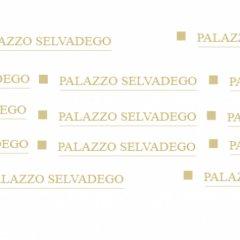 Отель Palazzo Selvadego Италия, Венеция - 1 отзыв об отеле, цены и фото номеров - забронировать отель Palazzo Selvadego онлайн спортивное сооружение
