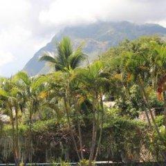 Отель My Place In Tahiti Французская Полинезия, Пунаауиа - отзывы, цены и фото номеров - забронировать отель My Place In Tahiti онлайн фото 2
