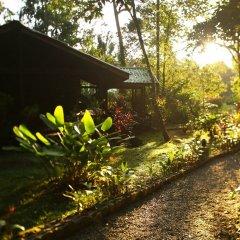 Отель The Lodge at Pico Bonito фото 18