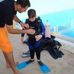 Отель Red Sea Dive Center с домашними животными
