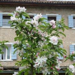 Отель B&B La Suita Италия, Чизон-Ди-Вальмарино - отзывы, цены и фото номеров - забронировать отель B&B La Suita онлайн фото 12
