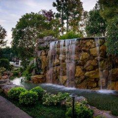 Отель Doubletree by Hilton Los Angeles Downtown США, Лос-Анджелес - 8 отзывов об отеле, цены и фото номеров - забронировать отель Doubletree by Hilton Los Angeles Downtown онлайн бассейн