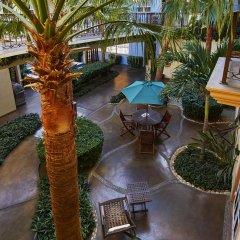 Отель San Angel Suites Педрегал фото 13