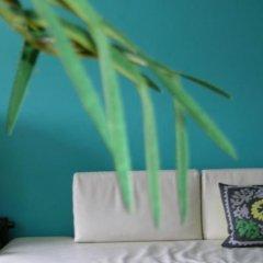 Отель Greenhouse Effect Нидерланды, Амстердам - отзывы, цены и фото номеров - забронировать отель Greenhouse Effect онлайн комната для гостей фото 3