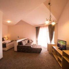 Отель Seven Seasons Hotel Болгария, Банско - отзывы, цены и фото номеров - забронировать отель Seven Seasons Hotel онлайн удобства в номере фото 2