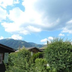 Отель Abnaki, Chalet Швейцария, Гштад - отзывы, цены и фото номеров - забронировать отель Abnaki, Chalet онлайн фото 3