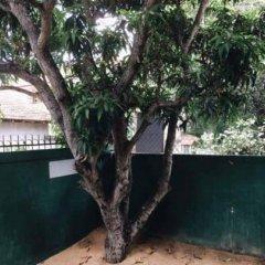 Yoho Hi Lanka Hostel - Negombo бассейн