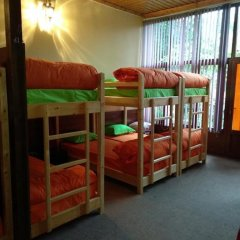 Отель Хостел и дом отдыха Sim Sim Узбекистан, Самарканд - отзывы, цены и фото номеров - забронировать отель Хостел и дом отдыха Sim Sim онлайн фото 5
