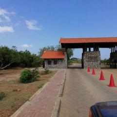 Отель Mahi Villa Шри-Ланка, Бентота - отзывы, цены и фото номеров - забронировать отель Mahi Villa онлайн фото 7