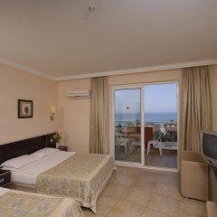 Lioness Hotel Турция, Аланья - отзывы, цены и фото номеров - забронировать отель Lioness Hotel онлайн комната для гостей фото 2