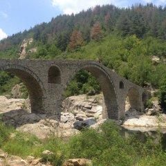Отель Melanya Mountain Retreat Болгария, Ардино - отзывы, цены и фото номеров - забронировать отель Melanya Mountain Retreat онлайн фото 25