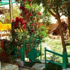 Отель Why not bedouin house Иордания, Вади-Муса - отзывы, цены и фото номеров - забронировать отель Why not bedouin house онлайн детские мероприятия