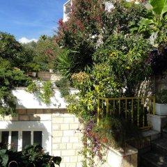 Отель Sun Rose Apartments Черногория, Свети-Стефан - отзывы, цены и фото номеров - забронировать отель Sun Rose Apartments онлайн фото 5