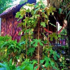 Отель Simply Life Bungalow Ланта приотельная территория
