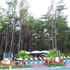 Green Forest Holiday Village Турция, Олудениз - отзывы, цены и фото номеров - забронировать отель Green Forest Holiday Village - All Inclusive онлайн приотельная территория