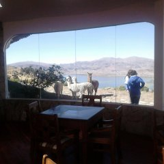 Отель Mirador del Titikaka гостиничный бар
