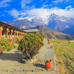 Отель Snowland Непал, Покхара - отзывы, цены и фото номеров - забронировать отель Snowland онлайн фото 5