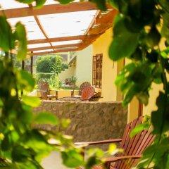 Отель Rosedale Organic Farm B&B фото 5