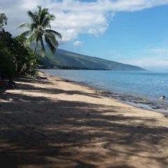 Отель Condo Ohi - Near Plage Toaroto Французская Полинезия, Пунаауиа - отзывы, цены и фото номеров - забронировать отель Condo Ohi - Near Plage Toaroto онлайн пляж фото 2
