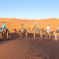 Отель Galaxy Desert Camp Merzouga Марокко, Мерзуга - отзывы, цены и фото номеров - забронировать отель Galaxy Desert Camp Merzouga онлайн помещение для мероприятий