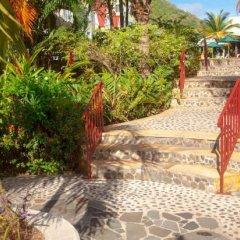 Отель Coco Palm фото 6