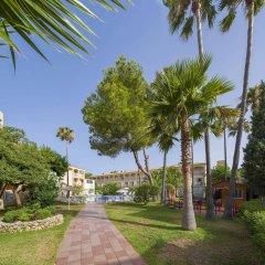 Hotel Playasol Cala Tarida фото 6
