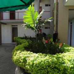 Отель Trans International Hotel Фиджи, Вити-Леву - отзывы, цены и фото номеров - забронировать отель Trans International Hotel онлайн фото 2