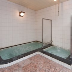 Отель Subaruyado Yoshino Минамиавадзи бассейн