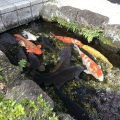 Ogaki Forum Hotel Огаки приотельная территория