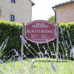 Отель Fattoria Abbazia Monte Oliveto Италия, Сан-Джиминьяно - отзывы, цены и фото номеров - забронировать отель Fattoria Abbazia Monte Oliveto онлайн спортивное сооружение