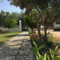 Отель Anastasia Studios Греция, Ханиотис - отзывы, цены и фото номеров - забронировать отель Anastasia Studios онлайн фото 7