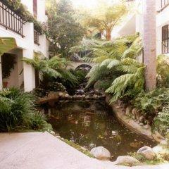 Отель Beverly Hills Plaza Hotel США, Лос-Анджелес - отзывы, цены и фото номеров - забронировать отель Beverly Hills Plaza Hotel онлайн бассейн фото 2