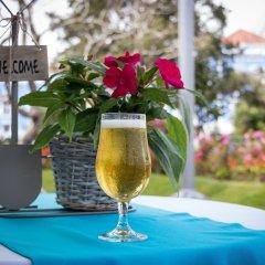 Отель Talisman Португалия, Понта-Делгада - отзывы, цены и фото номеров - забронировать отель Talisman онлайн фото 4