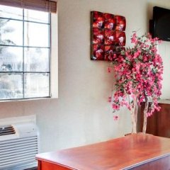 Отель Econo Lodge Vicksburg США, Виксбург - отзывы, цены и фото номеров - забронировать отель Econo Lodge Vicksburg онлайн фото 10