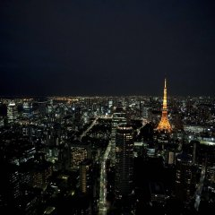 Отель Andaz Tokyo Toranomon Hills - a concept by Hyatt Япония, Токио - 1 отзыв об отеле, цены и фото номеров - забронировать отель Andaz Tokyo Toranomon Hills - a concept by Hyatt онлайн фото 2