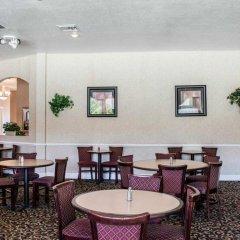 Отель Clarion Inn & Suites Clearwater гостиничный бар