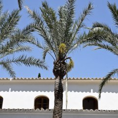 Отель Mirador de Dalt Vila парковка