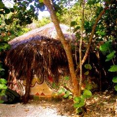 Отель Great Huts Ямайка, Порт Антонио - отзывы, цены и фото номеров - забронировать отель Great Huts онлайн фото 7