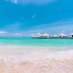 Отель Kihaa Maldives Island Resort фото 14