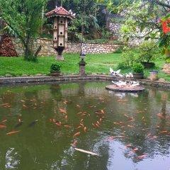 Отель Sapa Garden Bed and Breakfast Вьетнам, Шапа - отзывы, цены и фото номеров - забронировать отель Sapa Garden Bed and Breakfast онлайн приотельная территория