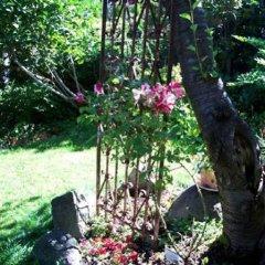 Отель Kitsilano Garden Suites Канада, Ванкувер - отзывы, цены и фото номеров - забронировать отель Kitsilano Garden Suites онлайн фото 6