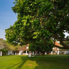 Отель Club Villa Шри-Ланка, Бентота - отзывы, цены и фото номеров - забронировать отель Club Villa онлайн фото 8