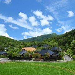 Отель Ryokan Miyama Sansou Минамиогуни фото 6