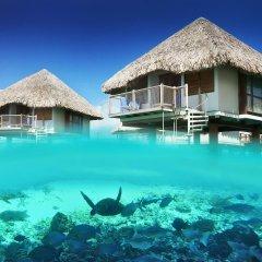 Отель Le Meridien Bora Bora пляж фото 2