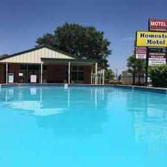 Отель Homestead Motel бассейн