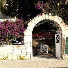 Отель Villa Adora Beach фото 7