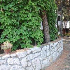 Отель Arberia Албания, Голем - отзывы, цены и фото номеров - забронировать отель Arberia онлайн фото 3