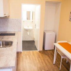 Апартаменты Lidicka Apartments в номере фото 2