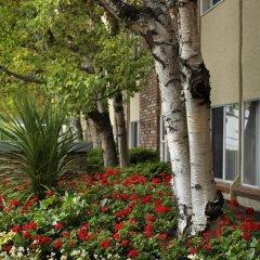 Отель Royal Scot Hotel & Suites Канада, Виктория - отзывы, цены и фото номеров - забронировать отель Royal Scot Hotel & Suites онлайн фото 13