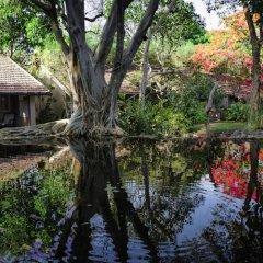 Отель Sigiriya Village фото 12